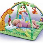 Fisher Price Rainforest Gym