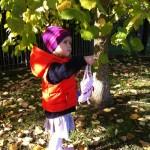 Celebrate Autumn: Parks