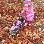 Autumn Walk in the Park